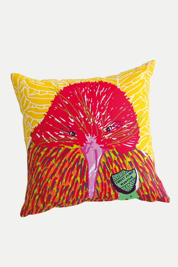 Kiwi Dude Harry Cushion