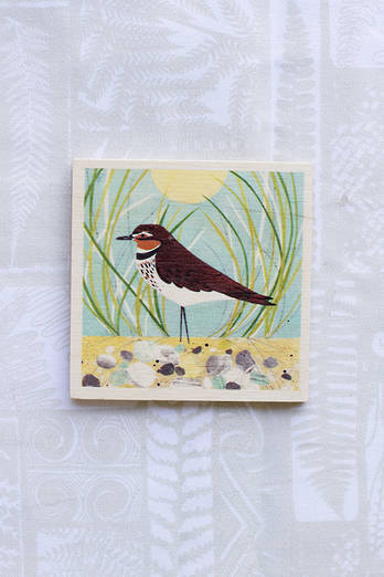Dotterel Coaster