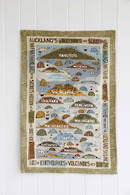 Aucklands Volcanoes Tea Towel - Coastal